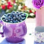 Purification and Weight Loss the natural way